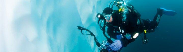 Antarktis – verdens sydligste dykkevand