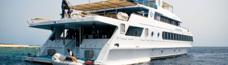 Sudan by boat – krydstogt i det sydlige Rødehav
