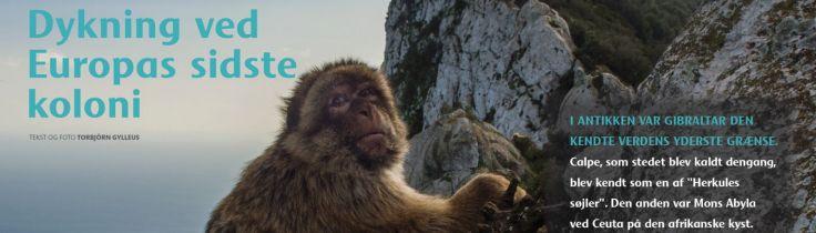 Gibraltar – Dykning ved Europas sidste koloni