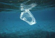 Plastikpose der flyder i havet